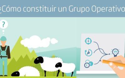 Grupo Operativo de Innovación